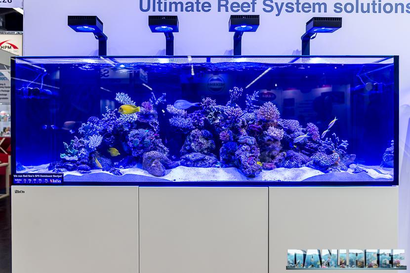 Acquario marino allestito in fiera