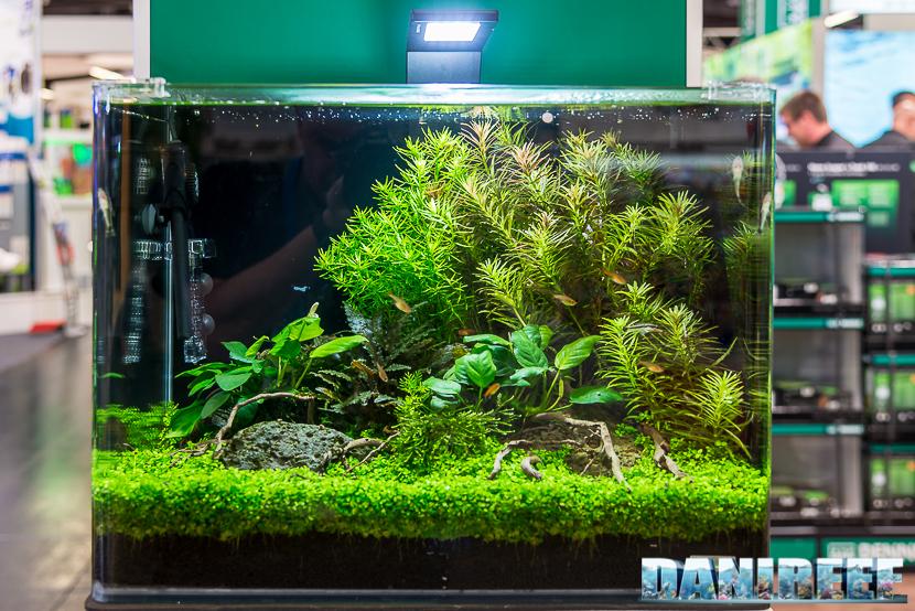 L'importanza di inserire le piante nella  giusta posizione