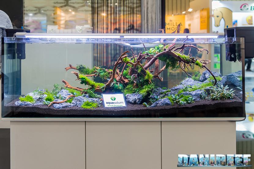 Interzoo 2018: il nuovo substrato organico aquasolum di aquavitro impiegato in un acquario