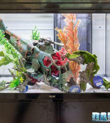 Interzoo 2018: Aquatlantis turns up with a huge booth