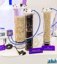 5 metodi per alzare il pH in un acquario marino