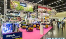 Interzoo 2018: the Dohse booth shows off a Dupla in great shape