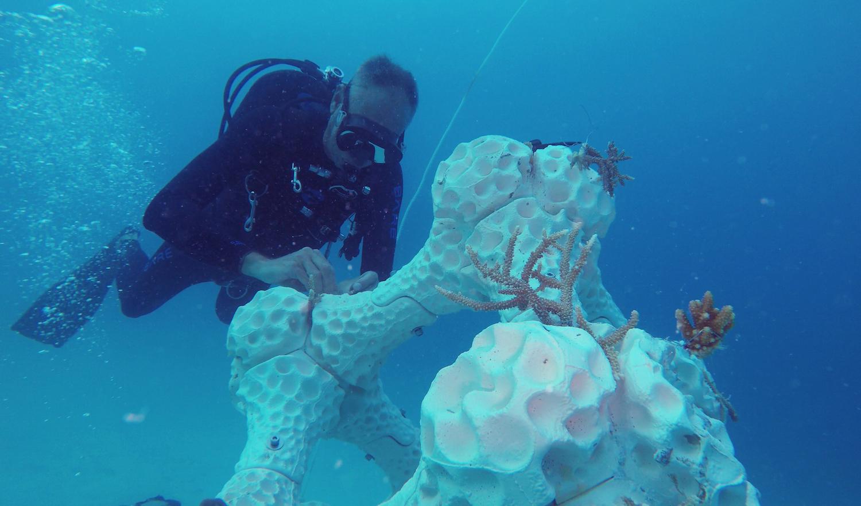 Barriere artificiali stampate in 3D vengono posate sul fondo del mare