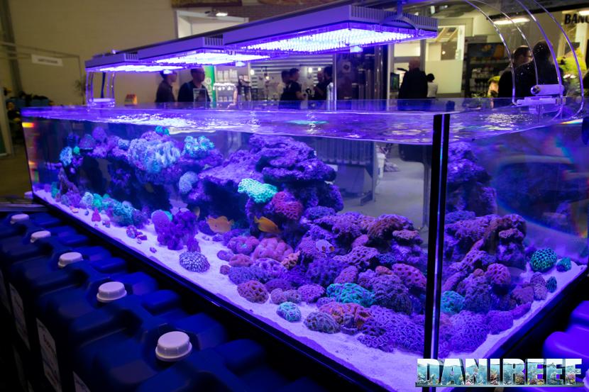 PetsFestival 2018: lo stand Oceanlife con Crystal Reef ed i suoi coralli