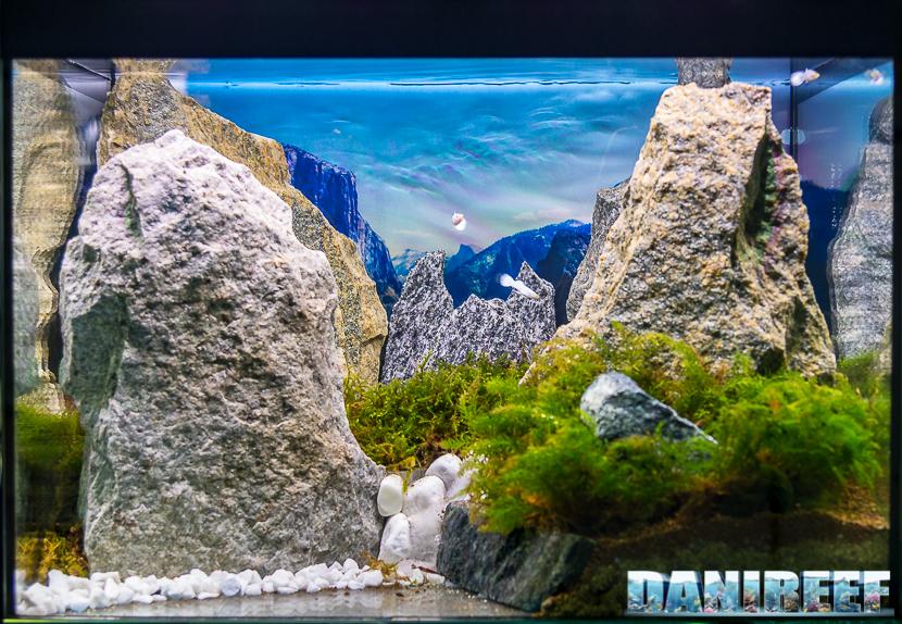 Il nuovo progetto Aquapaesaggismo di TeknoGreen