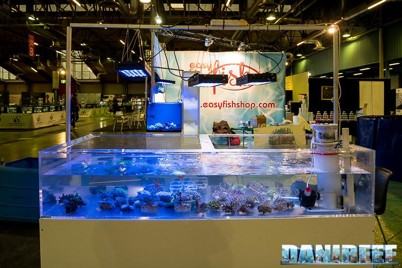 Vasca di coralli presso lo stand Easy Fish al Pet Expo e Show 2018