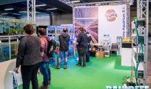 Pet Expo & Show 2018 a Bologna: Editoriale