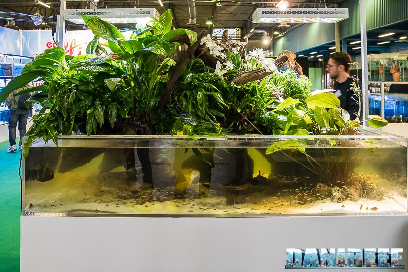 Pet Expo & Show a Bologna: Acquario di acqua dolce in mostra allo stand Easy Fish