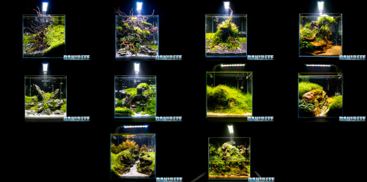 Mini Aquascaping in mostra al Pet Expo & Show 2018 Bologna