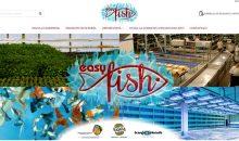 Easy Fish è il nuovo negozio di vendita online di pesci e coralli, dolce e marino, dell'amico Luca Girlando