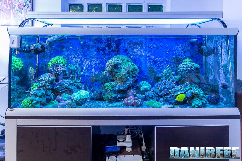Acquario di complemento da 500 litri
