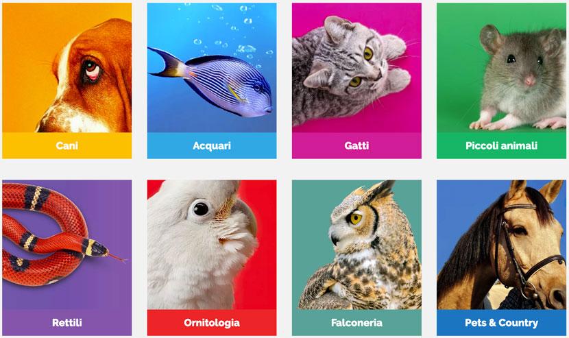 Il PetsFestival 2021 riparte in presenza il 16 ed il 17 ottobre a Cremona
