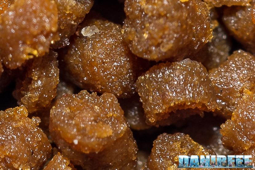 LPS Coral Pellets - mangime per coralli LPS  a polipo grande - vista macro dei pellets