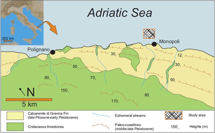 Scoperta la prima barriera corallina mesofotica mediterranea