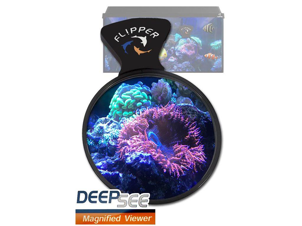 DeepSee Magnified Viewer - lente di ingrandimento per coralli