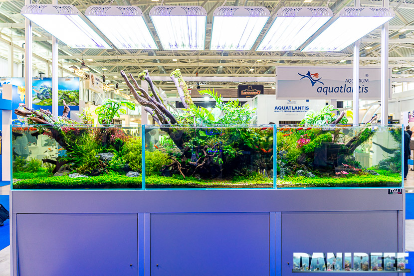 Acquario in mostra all'Acqua Project 2019 dello Zoomark