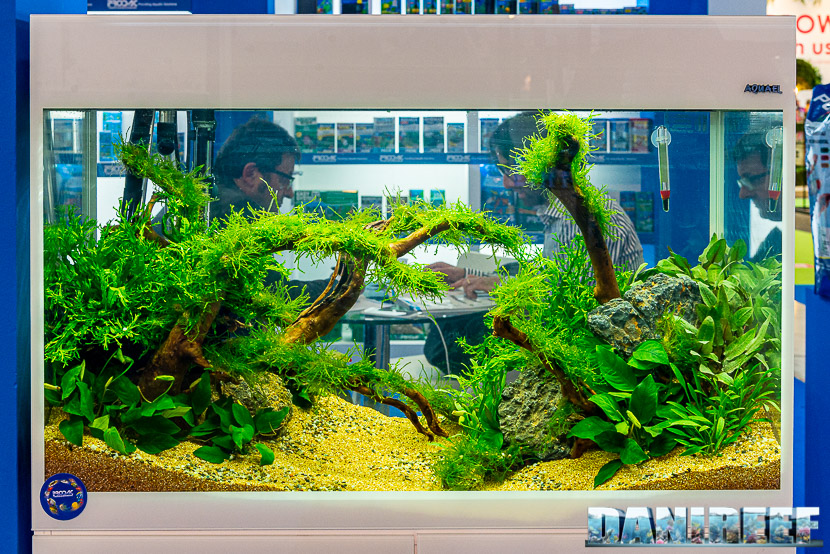 Zoomark 2019: Prodac distribuisce Aquael, qui l'acquario Aquael Glossy 100 white piantumato