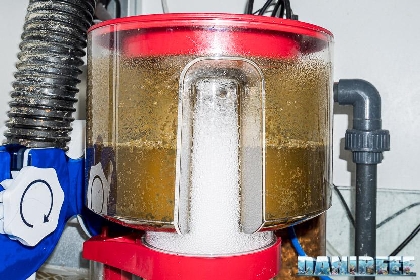 Red Sea RSK600 – La recensione dello schiumatoio senza manutenzione - particolare del percolato nel bicchiere