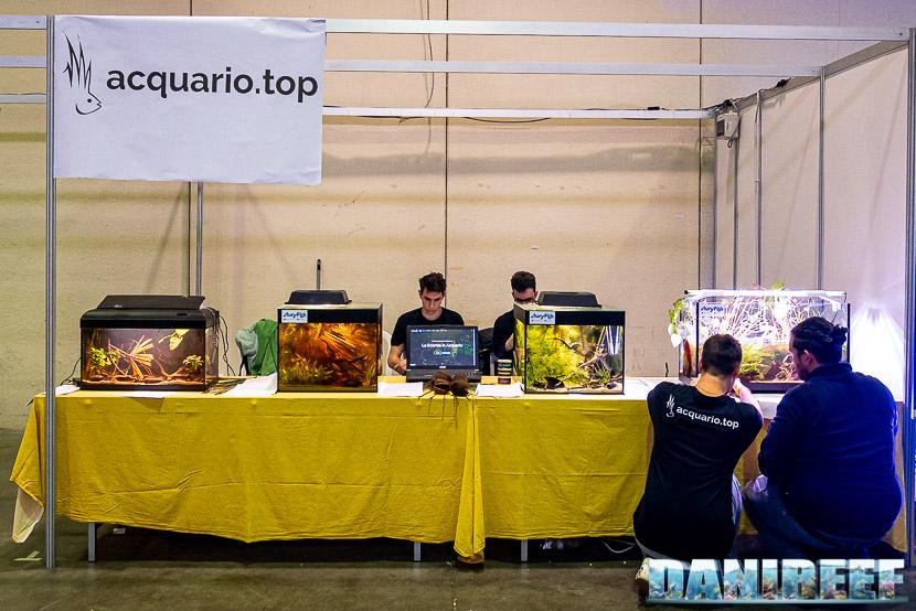Acquario Top mostra dei bellissimi Acquari Wild al PetsFestival 2019