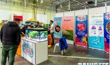 Easy Fish porta in mostra i pesci, ed un Centropyge, al PetsFestival 2019