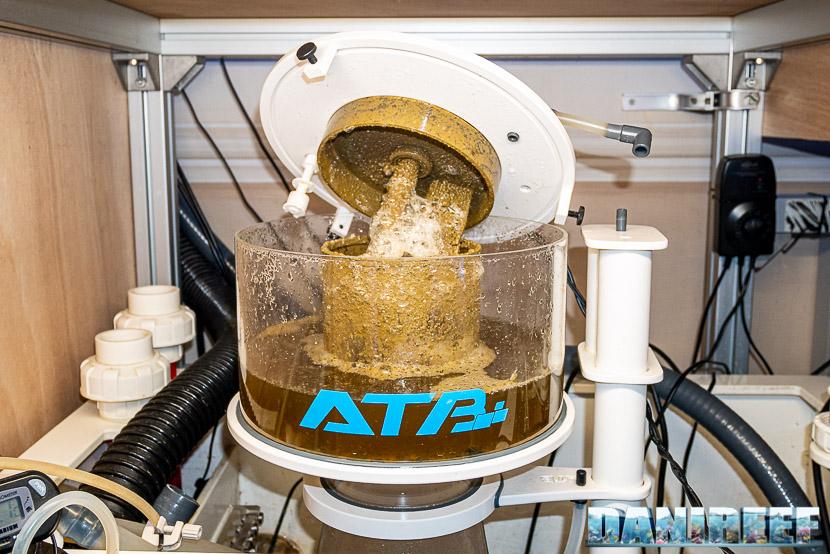 ATB Medium Size 25 - recensione dello schiumatoio da oltre 1300 l/h d'aria: bicchiere sporco