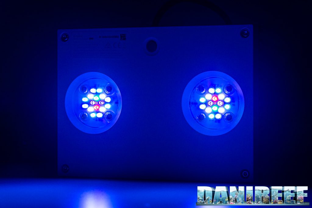 Plafoniera Led AI Hydra 32: analizziamo le prestazioni nel DaniReef Lab