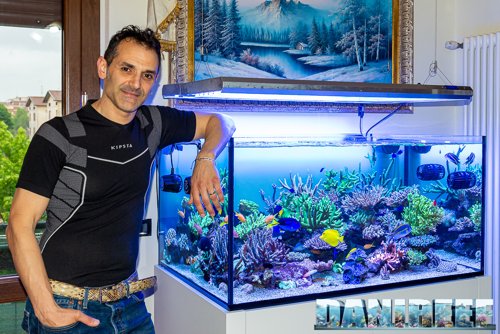 Giuliano Cafara ed il suo magnifico acquario di barriera da 500 litri