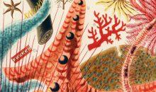 Incredibili illustrazioni della Grande barriera corallina del 1893