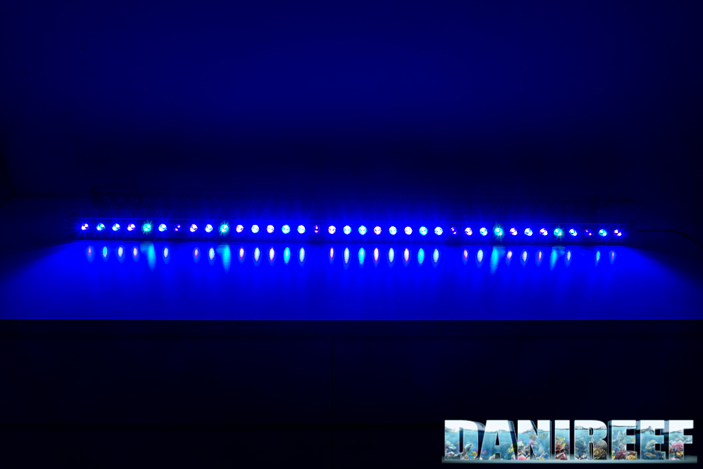 Le barre a LED Orphek OR2 Blue Plus testate a fondo nel DaniReef LAB