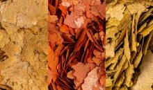 The new feeds of the PRO series by Amtra: Natural, Color and Vegetal Flake