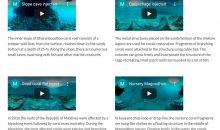 Immergiamoci negli atolli delle Maldive con queste riprese a 360 gradi VR