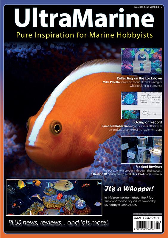UltraMarine Magazine n. 82 è in edicola... virtuale