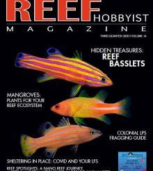E' uscito Reef Hobbyist Magazine del terzo trimestre: Liopropoma e acquari