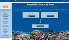 Corals of the world di Veron finalmente disponibile gratuitamente ed aggiornato