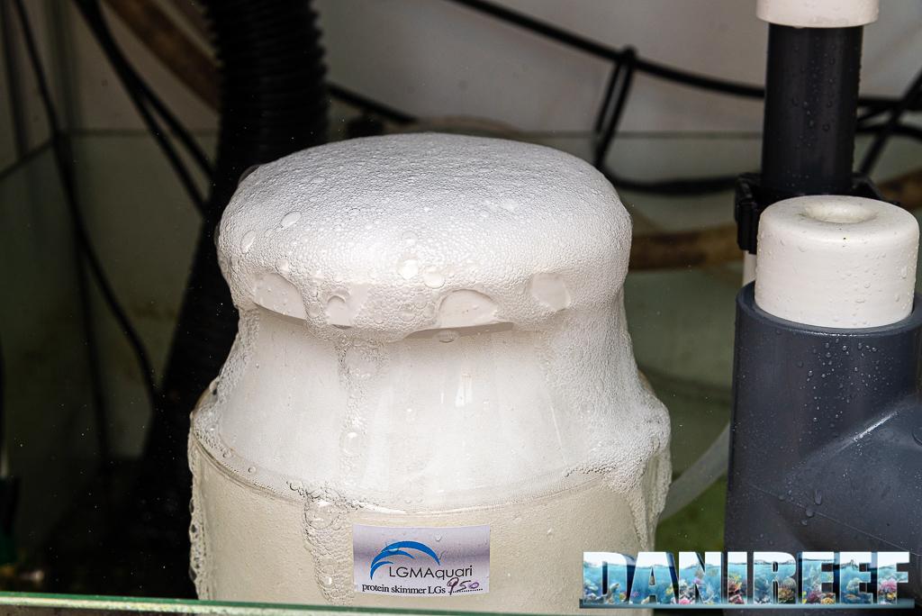 Schiumatoio LGMaquari LGs950: solido, efficiente e doppia pompa - bolle di schiumazione