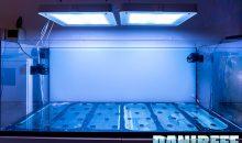 Un metodo scientifico e preciso per calcolare i litri di acqua presenti in acquario
