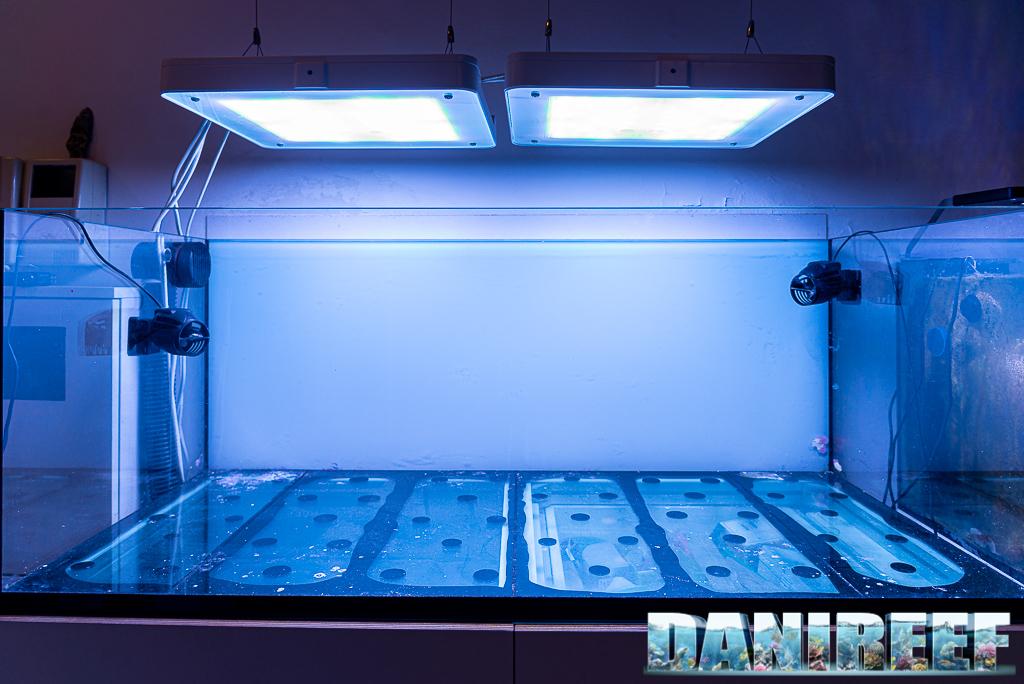 Un metodo scientifico ma preciso per calcolare i litri di acqua presenti in acquario