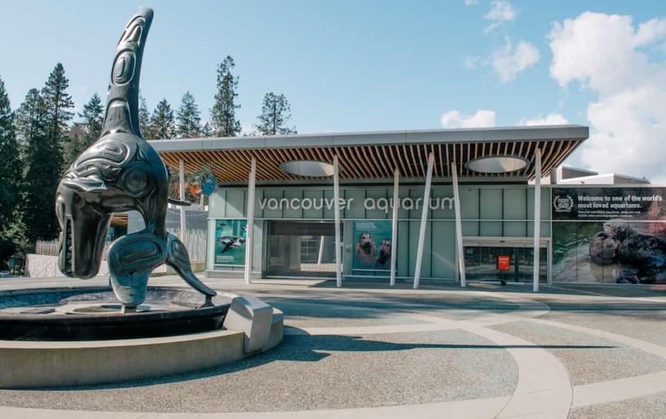 Effetti della pandemia: il Vancouver Aquarium chiude le porte al pubblico