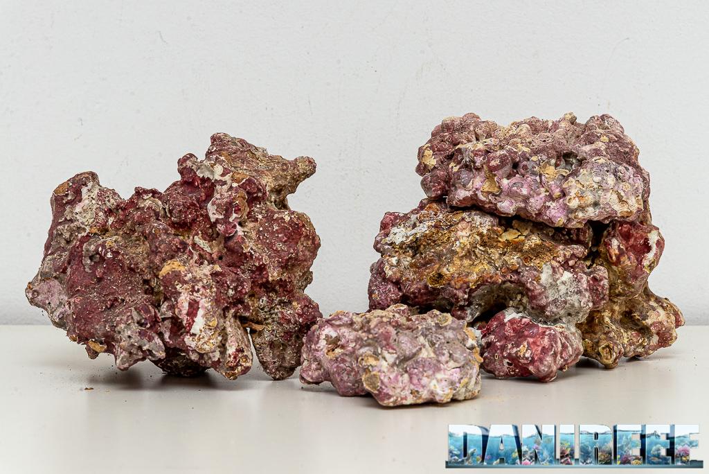 Light Sea Rock - Iniziamo oggi uno Speciale sulle Rocce sintetiche