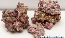 Light Sea Rock – Iniziamo oggi uno Speciale sulle Rocce sintetiche