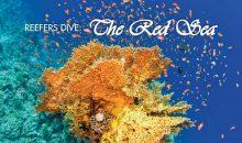 Reef Hobbyist Magazine del quarto trimestre: il Mar Rosso