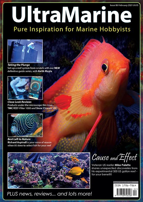 UltraMarine Magazine n. 86 disponibile per lo scaricamento