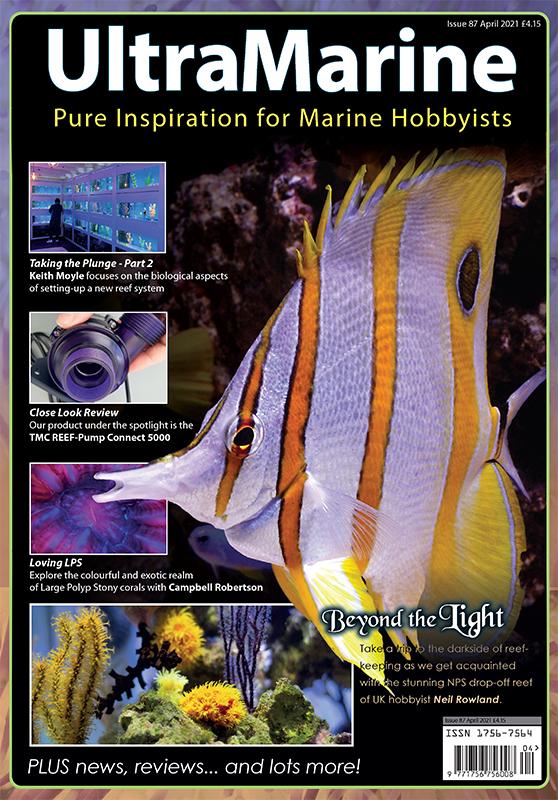 UltraMarine Magazine 87 dedicato al Chelmon rostratus è disponibile oggi