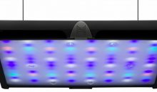 Sky Led: da Neptune Systems (Apex) la plafoniera perfetta per acquario marino?
