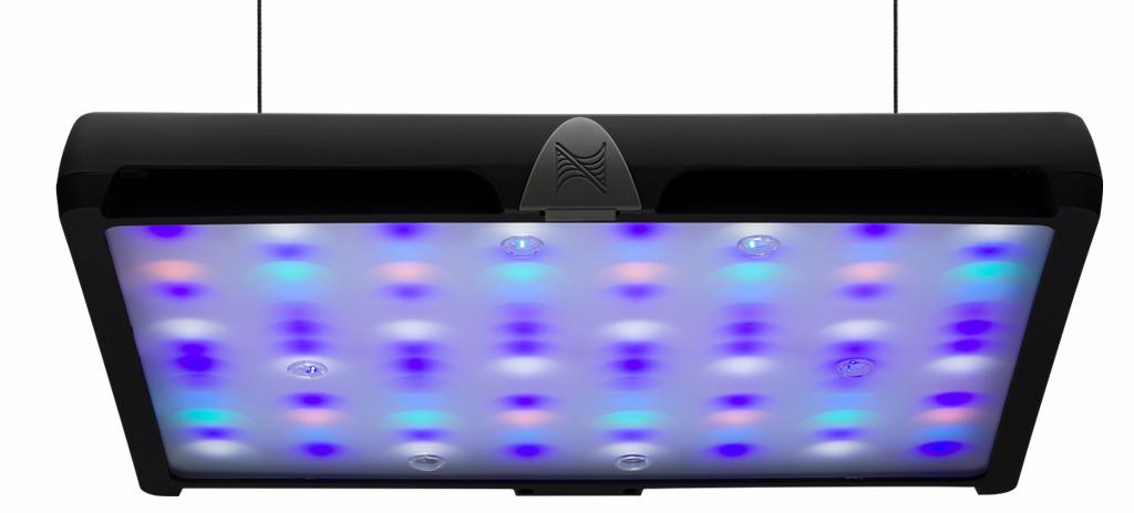 Sky Led: da Neptune Systems (Apex) la plafoniera perfetta per acquario marino? Distribuzione dei led