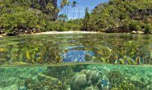 Biotope Aquarium Contest Marine: un contest dedicato ai biotopi marini