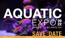 Aquatic Expo 2022: quando il Macna diventa anche di acqua dolce