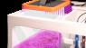 Gro macroalgae light - plafoniera per macroalghe di Neptune Systems