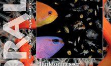 Il numero 131 di Koralle parla del magnifico acquario marino di Jonathan Betti